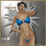 Lingerie TD Cleo with Appliers - Blue