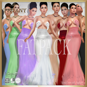 TD Sienna Gown with Appliers FATPACK