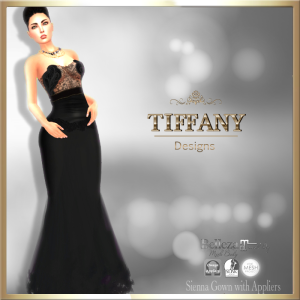 TD Sienna Gown with Appliers GROUP GIFT