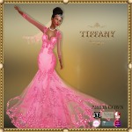 TD Brida Gown with Appliers Pink