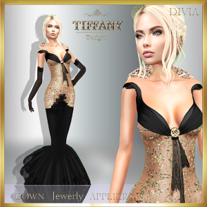 td-divia-gown-with-appliers-black