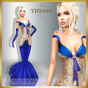 td-divia-gown-with-appliers-blue