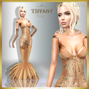 td-divia-gown-with-appliers-cream